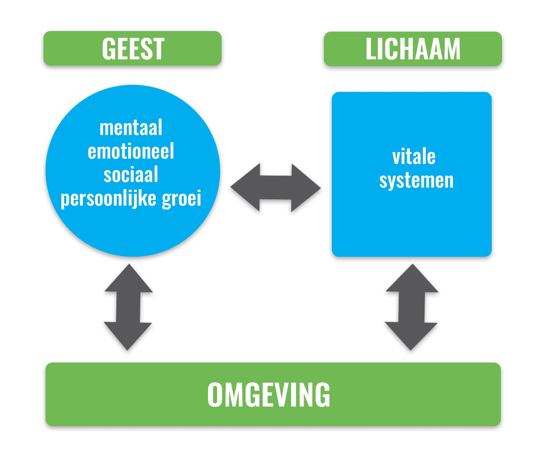 De invloed van lichaam, geest en omgeving op jouw gezondheid en vitaliteit